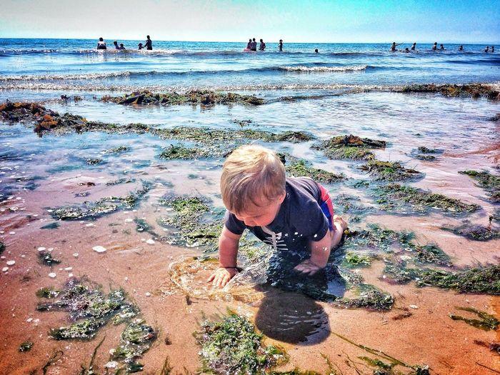 Playing in the sea Seaside On The Beach Fun In The Sun Having Fun