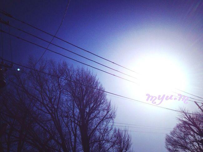 おはよっ😊…背中押す太陽が、今日もあったかいよー。一歩ずつ…歩いてる。今日もいい日を*みんなへ❤️繋がる空から Tokyo,Japan Nice Day EyeEm Best Shots Peace 繋がる空から未来へ
