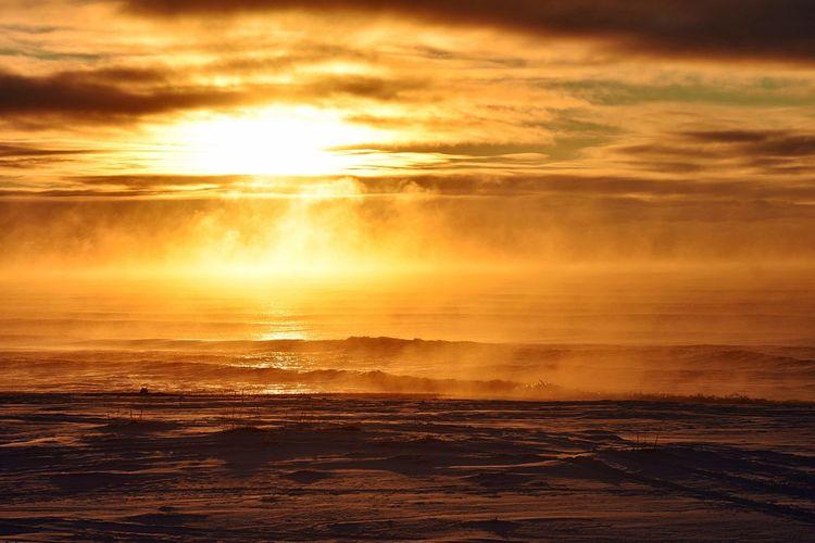 Sunset over the Chukchi Sea Copy Space Alaska Arctic Sunset Water Sky Sea Beauty In Nature Cloud - Sky Scenics - Nature Orange Color Horizon Over Water Sunlight Tranquility Idyllic Nature Reflection Tranquil Scene Beach No People Horizon Sun Outdoors