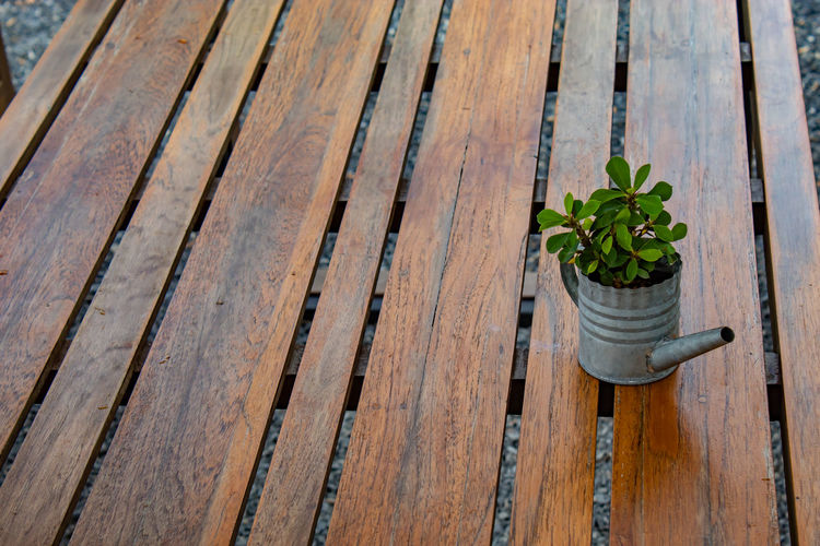 A small tree with the table for beauty. Brown Close-up Day Flower Pot Gardening Gardening Equipment Growth High Angle View Houseplant In A Row Leaf Nature No People Outdoors Pattern Plank Plant Plant Part Potted Plant Water Wood Wood - Material Wooden Post
