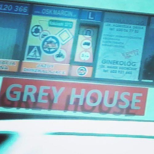 Grey Hyhyhy