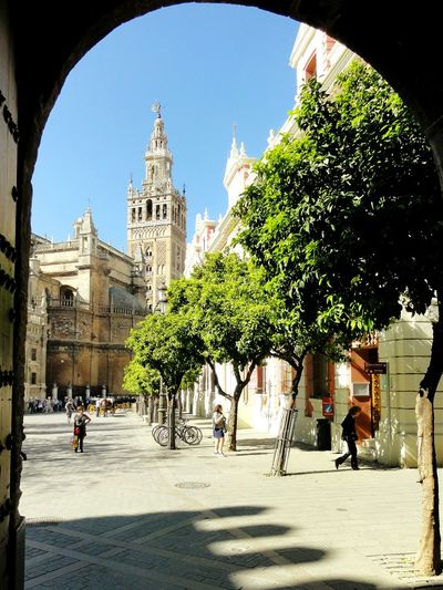 España Sevilla Catedral Streetphotography Traveling Architecture Sunny Day Rule Of Thirds Open Edit