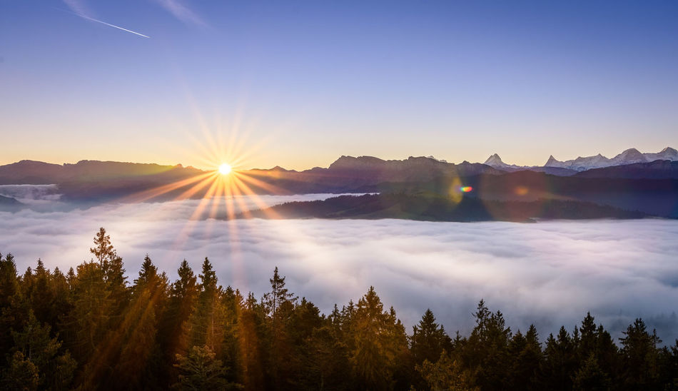 Cloud - Sky Fog Forest Igniting Landscape Morning Mountain Mountain Peak Mountain Range Natural Parkland Nature No People Outdoors Pinaceae Pine Woodland Reflection Sky Snow Social Issues Space Sun Sunbeam Sunlight Sunset Tree