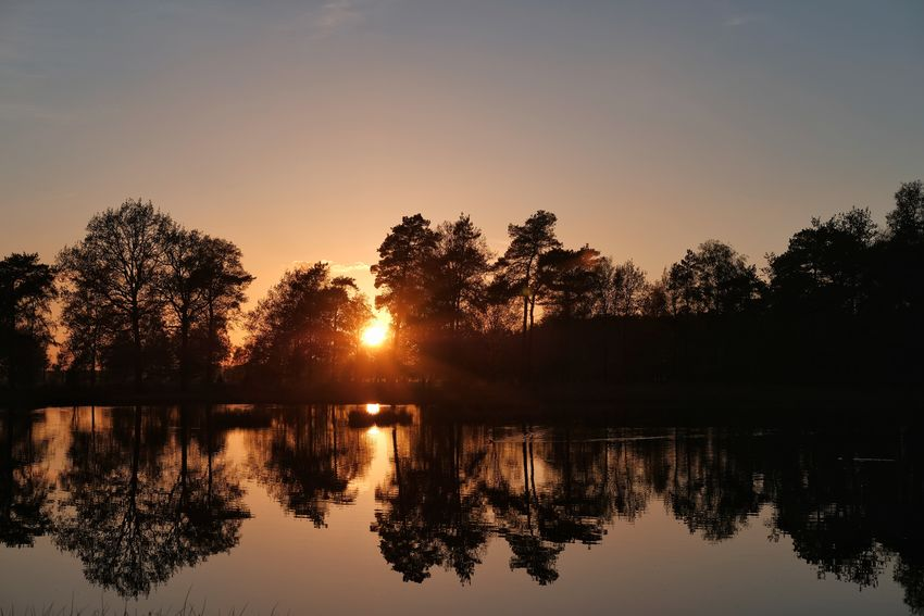 Sunset Drenthe the Netherlands Nature Photography Nature Sunlight Sunlight And Shadow Tree Water Sunset Lake Silhouette Reflection Sky Reflection Lake Sun