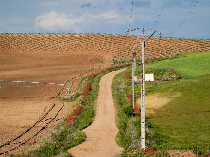 landscape