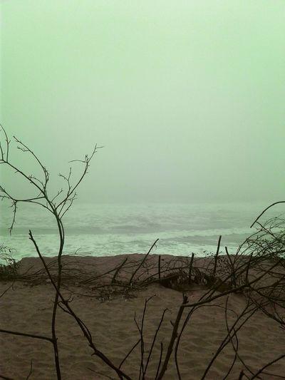 Sea Nature Beach Scenics Outdoors San Francisco Phoneography PhonePhotography Ocean Beach
