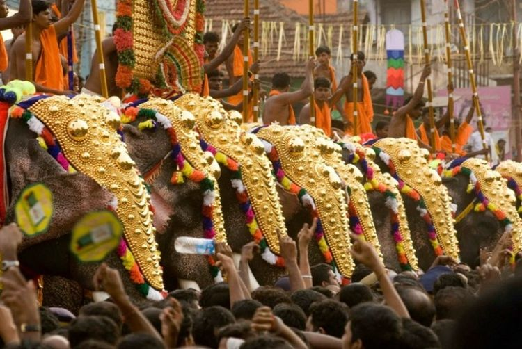 Trissur kerala temple festival line of elephants hugely caprisioned,decorated. Large Group Of People