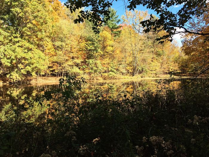 Lake picture at Hogback Park. Taken on iPhone 6s. Lake Lake View Nature Scenics IPhoneography Colors Of Autumn Park Ohio