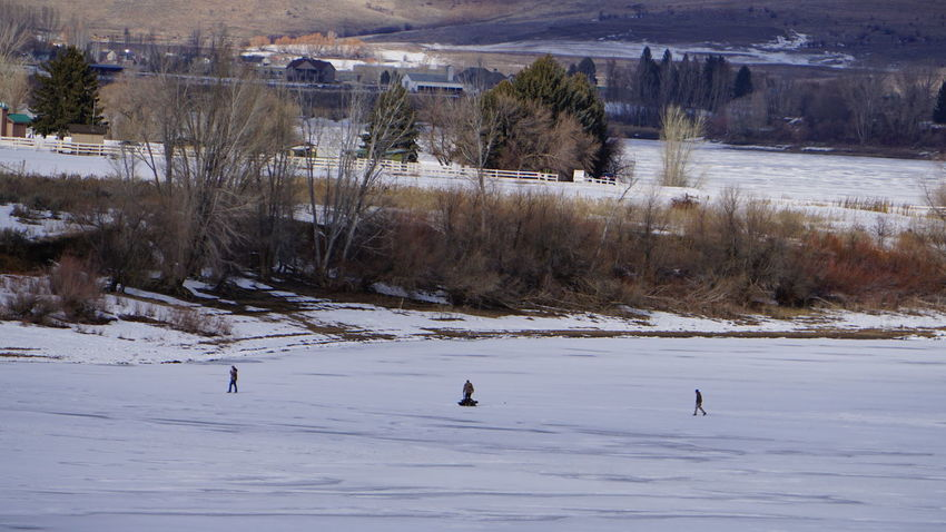 Icy Lake Icy Lake Pineview Dam Bare Trees Ice EyeEm Selects Snow Winter Cold Temperature Outdoors Frozen Day People Tree Nature Ice Hockey