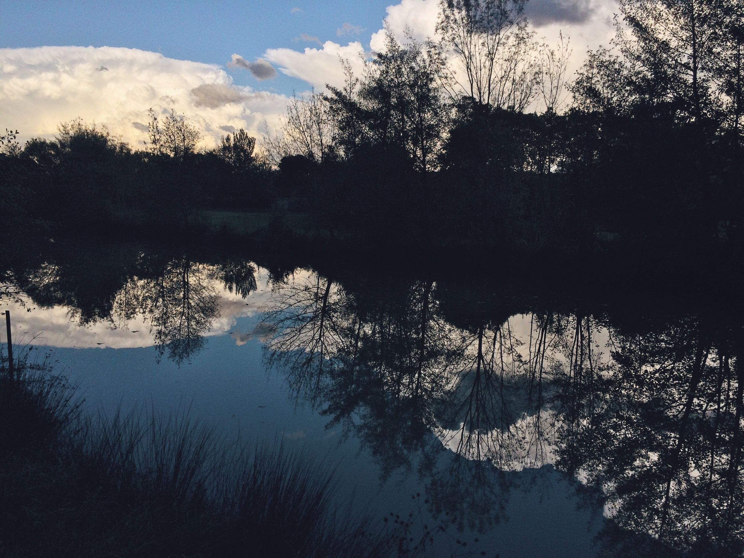 water, tree, lake, reflection, tranquility, tranquil scene, sky, scenics, silhouette, beauty in nature, nature, river, bare tree, cloud - sky, lakeshore, calm, sunset, idyllic, cloud, no people