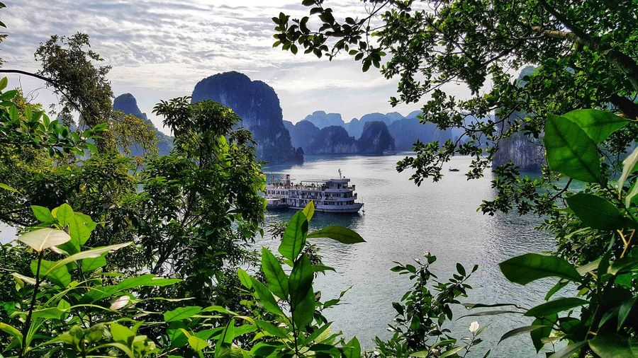 memories Halong Bay Vietnam Time Of Our Lives Blue Sky Mountain View South East Asia Wonderous Nature Nature Mountain Outdoors Day Growth Beauty In Nature No People Plant Scenics Tree Sky
