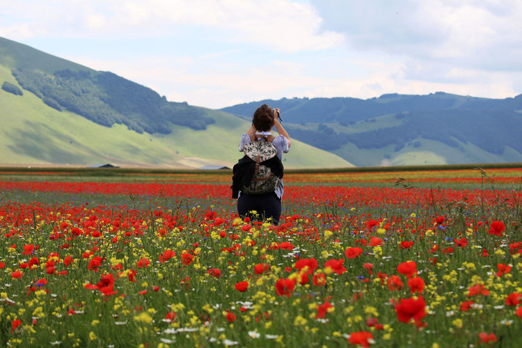 Rear view of woman standing amidst poppy field against sky