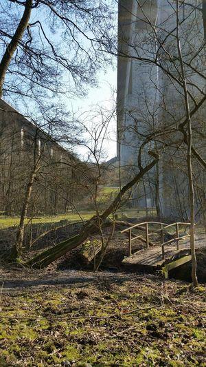 Natur zwischen den Autobahnbrücken eingerahmt Sunday Afternoon Withoutfilter Light And Shadow