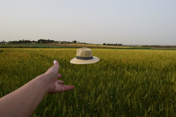 Adult Adults Only Agriculture Cereal Plant Clear Sky Drink Environment Environmental Conservation Field Fieldscape Food And Drink Grass Growth Holding Human Body Part Human Hand Landscape Nature One Person Outdoors People Rural Scene Sky Vacations Yellow