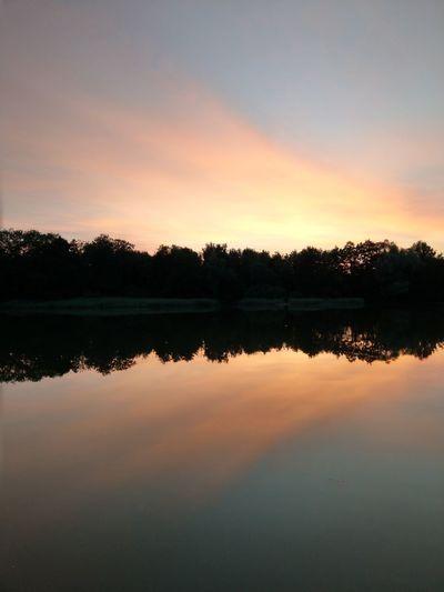 sundowner Tree Water Sunset Lake Dawn Symmetry Reflection Silhouette Sky Standing Water Lakeside Waterfront