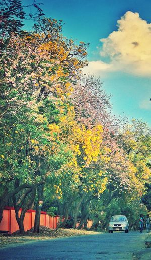 God writes the Gospel not only in the Bible, but also on trees, and in flowers and clouds. Theessenceofsummer