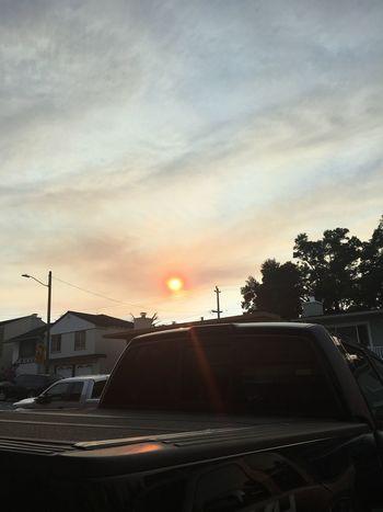 Evening sun Haze Polluted Sky Reflection F150 Car Motor Vehicle Sky Mode Of Transportation Transportation Tree Sunset Sun Sunlight