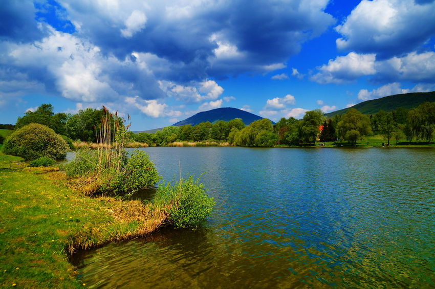 Colorful view of the lake Happiness Beauty In Nature Cloud - Sky Colorful Day Green Color Idyllic Lake Lakeshore Lakeside Landscape Mountain Nature No People Outdoors Pilis Pilisszántó Scenics Sky Tranquil Scene Tranquility Travel Destinations Tree Water Waterfront
