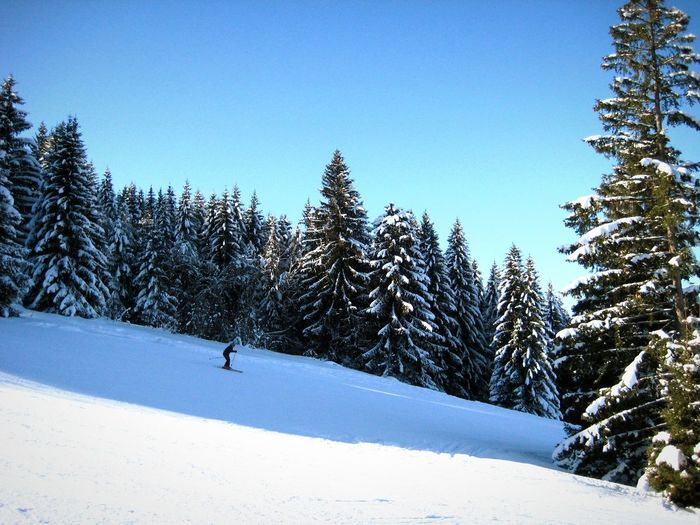 Side view of man skiing on snow landscape
