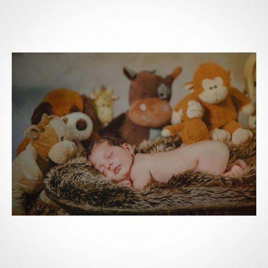 Newborn Baby Babyphoto