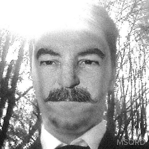 Politician Stalin Stalin Alive Best  Msqrd