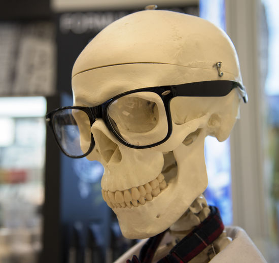 Close-up of eyeglasses over human skull