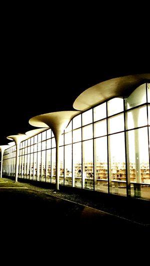 Night view 國立臺灣大學 National Taiwan University  Building Night Lights Tourists EyeEm Best Shots Sightseeing Taking Photos Weekend