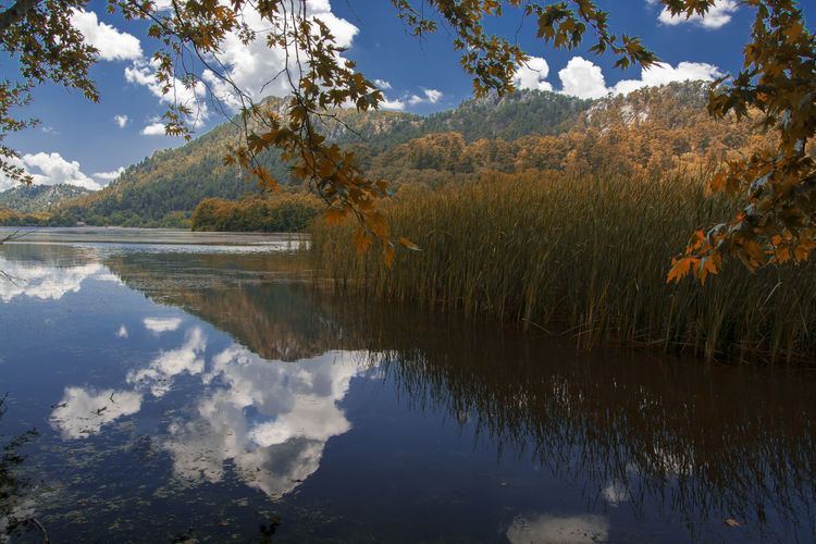 Lake Water Waterfall Sky Sea Day Green Color Blue Waterfrontview Nature Nature_collection Nature Photography Mountain Reeds Autumn View Sun Cloud - Sky Reflection Plant Scenics - Nature Tranquility Tranquil Scene No People Tree