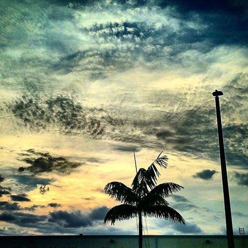 Florida Clouds Skydrama Sky Skyobsession Skyporn Skyline Cloudscape Clouds Floridaclouds Visitflorida