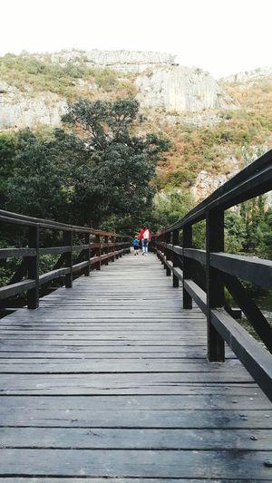 Dalmatia Nacionalni Park Krka Railing Bridge - Man Made Structure Footbridge Outdoors The Way Forward Day Tree Nature Adult People Sky Beauty In Nature Only Men