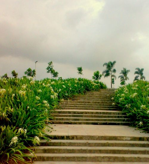 Beauty In Nature Green Color No People Outdoors Plant Scenics Sky Stairs The Way Forward Weather