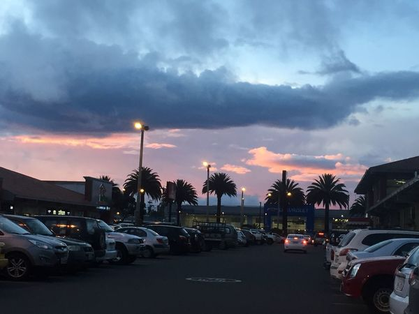 Palm Tree Sun Sunset Ecuador Ibarra Nature Cars