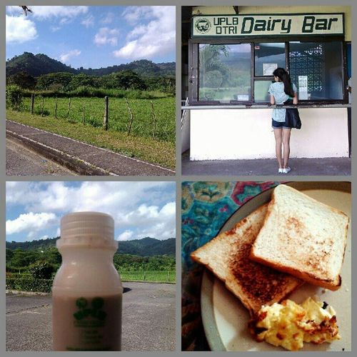 My morning with my sister: went on a pedicab ride to DTRI (Dairy Training and Research Institute) to buy chocolate milk, went to the market to buy ingredients for lunch, then headed home to have a breakfast of toast and fresh white cheese. Goodlife
