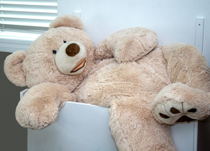 A giant life sized Teddy bear can barely fit in a large child's toy box Funny Animal Representation Big Bear Brown Childhood Clean Up Time  Close-up Comical Day Domestic Room Furniture Giant Sized Home Interior Indoors  Relaxation Representation Softness Still Life Stuffed Bear Stuffed Toy Teddy Bear Toy Toy Animal Toy Box Wont Fit The Still Life Photographer - 2018 EyeEm Awards The Creative - 2018 EyeEm Awards