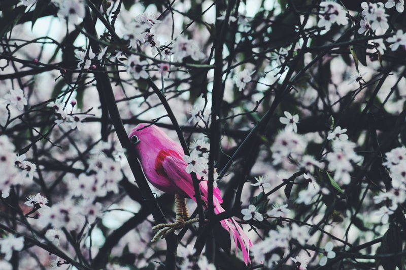 Close-up of artificial pink bird perching on tree