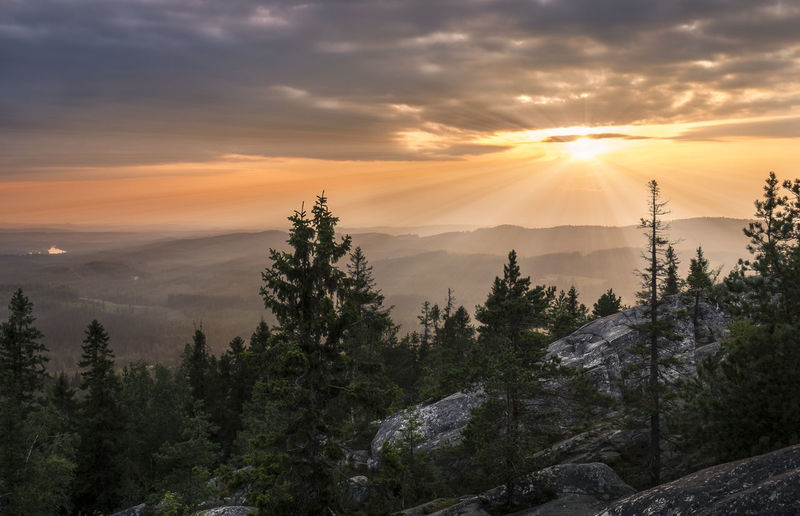 Scenic landscape with sunset and sun rays at summer in Koli national park, Finland Atmospheric Mood Beauty In Nature Clouds And Sky Colorful Forest Hiking Horizon Over Land Landscape Mind  Mountain National Park Nature Outdoors Peaceful Pine Tree Pure Rock Scenics Stony Summer Sun Light Sun Rays Sunset Tree Trees