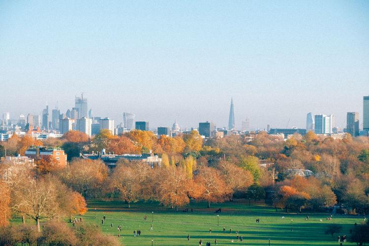 Autumn Trees Sky London Yellow Dusk Park Streetphotography Skyline