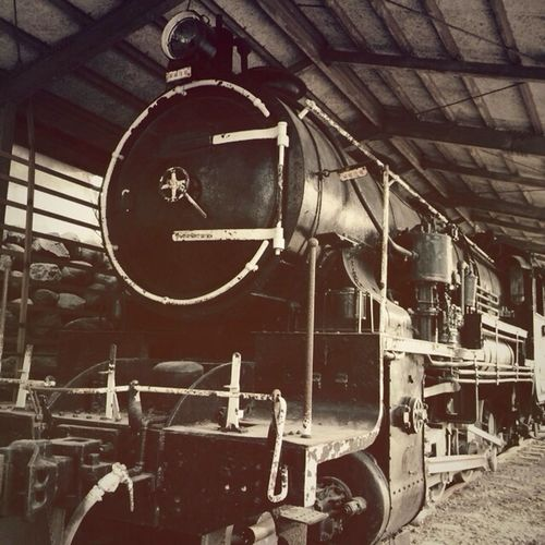 Steam Locomotive 蒸気機関車