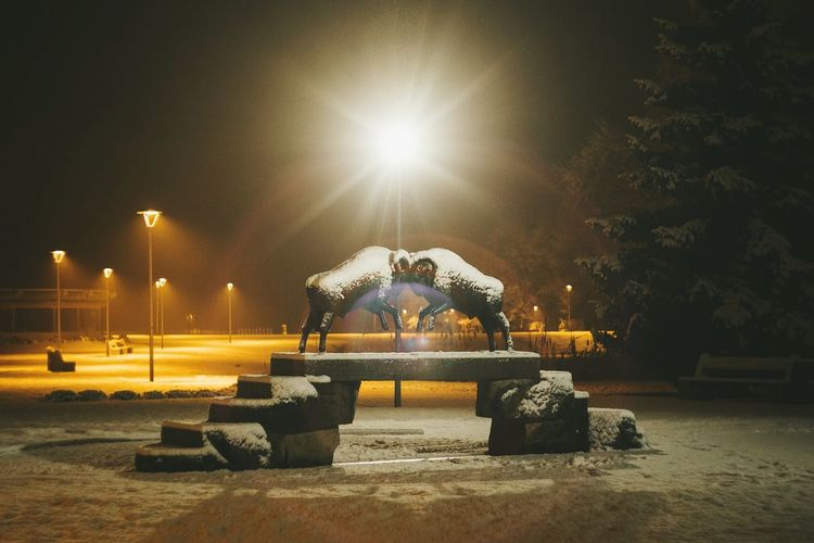 Fight of rams Wether Animals Statue Bright Light Light And Shadow Light In The Darkness Winter Snow Fight Head Fight Night Illuminated Fun Outdoors