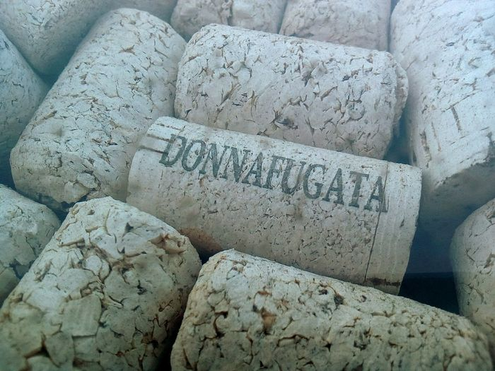 Donnafugata Plug Wine Stoppers Wine Full Frame Beach Text Communication Textured  Close-up Pebble Beach Written Note