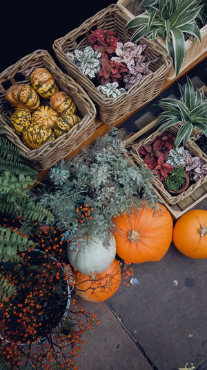 High angle view of pumpkin for sale in market