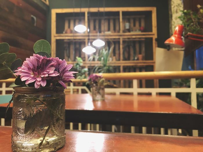 But First, coffee Jungle Love Berlin Breakfast Berlin Coffee Woman Flower Flowering Plant Table Plant Freshness No People Vase Glass - Material Decoration Focus On Foreground Illuminated Nature Reflection Architecture Indoors  Built Structure Transparent Fragility Restaurant Vulnerability
