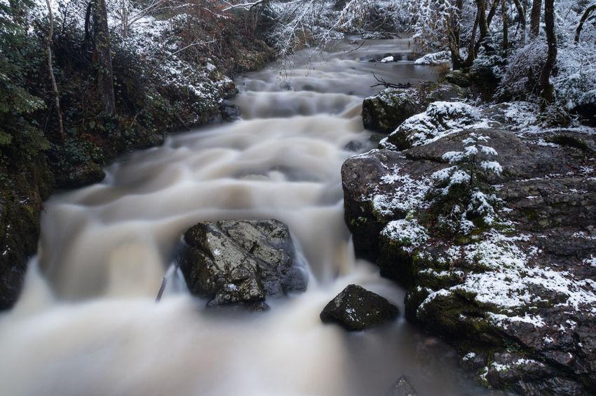 Long exposure of a creek called Kleine Lieser near Manderscheid EyeEm Nature Lover EyeEmNewHere Beauty In Nature Blurred Motion Flowing Water Long Exposure Motion Outdoors Rock - Object Scenics Water EyeEmNewHere