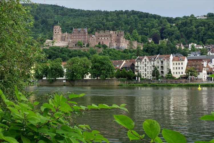 Außenaufnahme Beautiful Castle Deutschland Heidelberg Schloss Sonniger Tag Sunnyday☀️ Fluss Germany Man Made Object Man Made Structure Neckar Outdoor Photography River Schlossruine Vegetation Wasserspiegelung Waterfall Riverbank Fortified Wall Fortress Old Ruin Residential Structure Residential District Human Settlement TOWNSCAPE