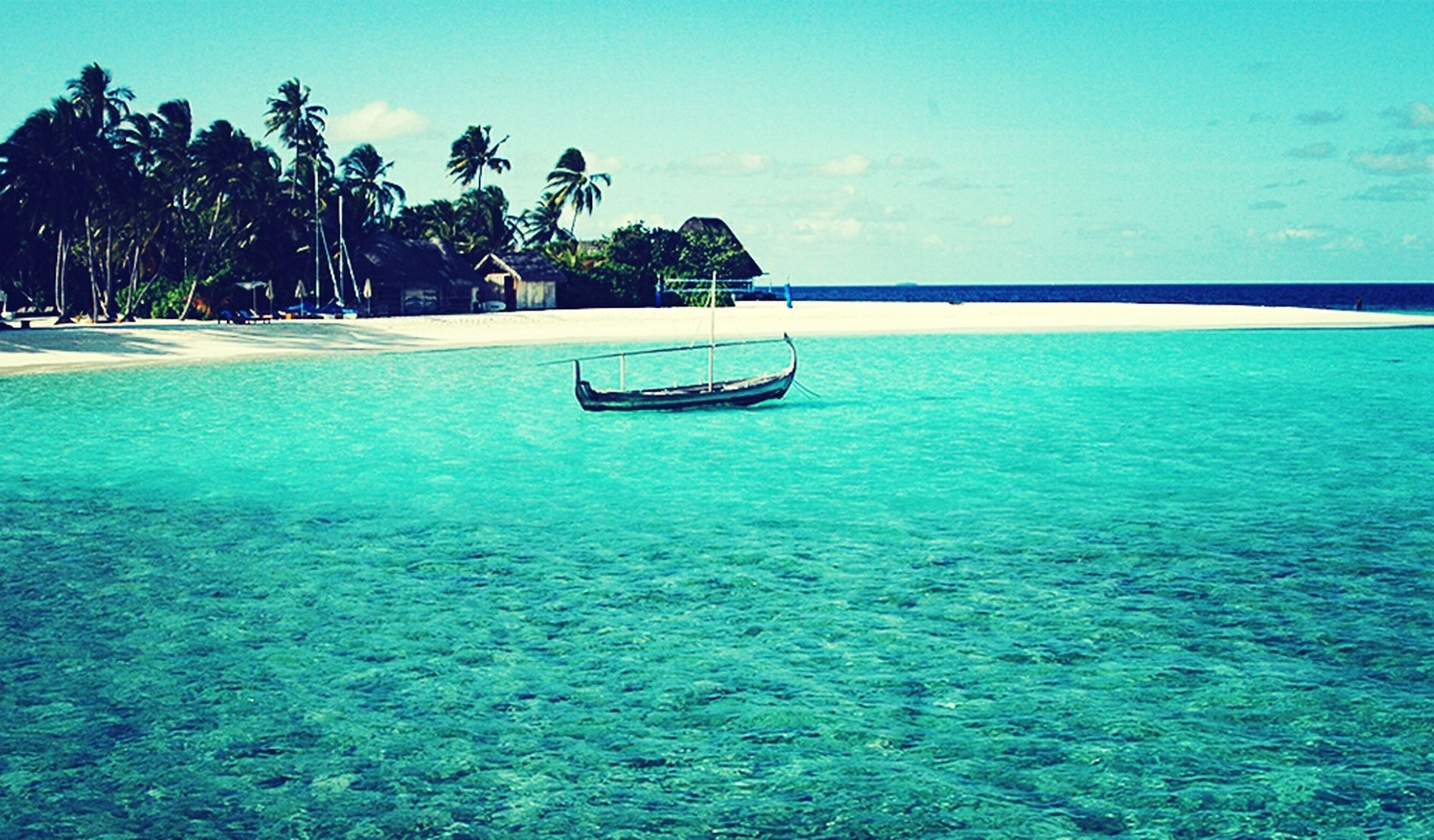 sea, water, tree, horizon over water, palm tree, blue, tranquility, beach, tranquil scene, sky, scenics, beauty in nature, nature, shore, idyllic, sand, swimming pool, nautical vessel, vacations, waterfront