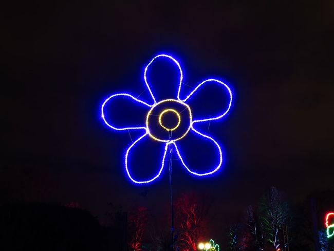 Abstract Flower Flower Shape Glow Glowing Glowinthedark Ideas Illuminated Illumination Lightpainting Neon Night Painted Flower Shape Symbol