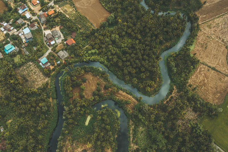 Aerial view of river by trees and buildings