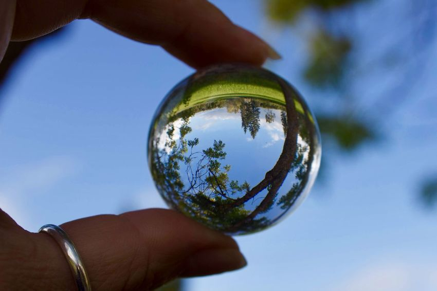 Small world🌏 Glass Ball Photography Body Part Close-up Day Finger Focus On Foreground Glass Glass - Material Hand Holding Human Body Part Human Finger Human Hand Nature One Person Outdoors Plant Reflection Sky Sphere Transparent Tree