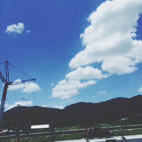 Sky Bule Pataya Green
