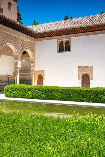 Alhambra (Granada) Alhambra De Granada  Alhambra Arch Architecture Building Exterior Built Structure Courtyard  Courtyard  Day Grass Green Color Growth Hedge History Lawn Nature No People Outdoors Plant Sky Sunlight The Past Travel Destinations Window